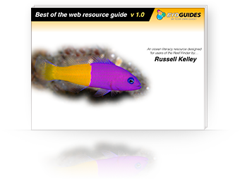 Best of the web resource guide eBook